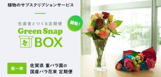 GreenSnap BOX